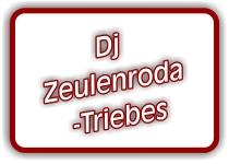 dj-in-zeulenroda-triebes